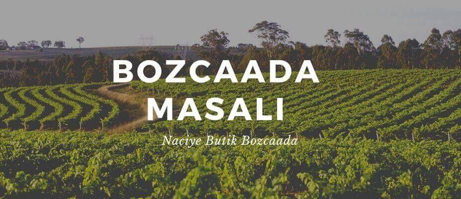 Bozcaada Masalı Naciye Butik Bozcaada Resimi ve Kadın Elbiselerin temsilen Bozcaada Bağları Resimi